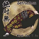 What Can I Do by Zettaimu (2003-11-18)