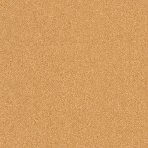 サンゲツ 壁紙28m キッズ  オレンジ ファミリア&ポップ FE-4001 B06XKQC2TC 28m|オレンジ