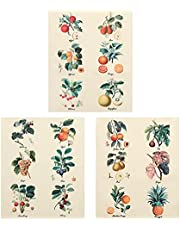 3Pcs Flower Tapestry Wall Hanging - Lourny Wildflower Plant Floral Tapestry Identification Reference Chart Small Tapestry for Bedroom Living Room