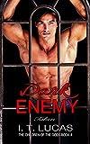 Download Dark Enemy: Taken (The Children Of The Gods Paranormal Romance Series Book 4) in PDF ePUB Free Online