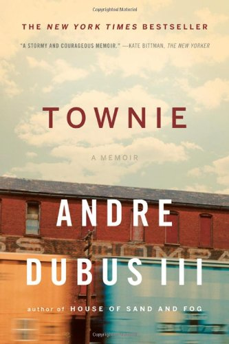 Book cover for Townie