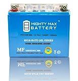 YTX12-BS 12V 10AH GEL Battery For Honda TRX250 TRX200 ATC Kymco MXU - Mighty Max Battery brand product