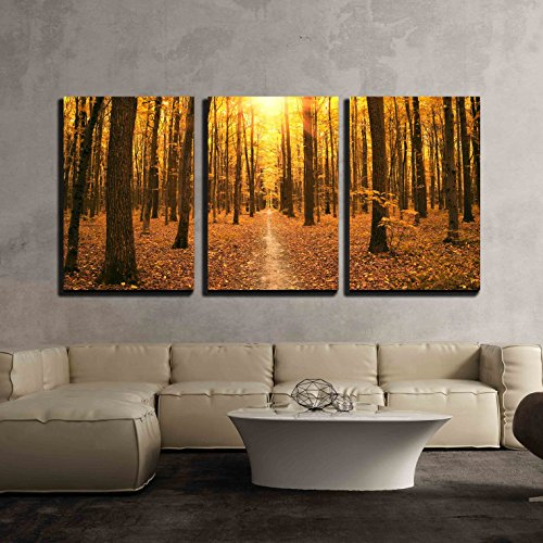 wall26 - 3 Piece Canvas Wall Art - Autumn Trees in the Forest - Modern Home Decor Stretched and Framed Ready to Hang - 24