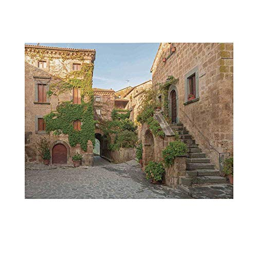 Tuscan Photography Background,Village Houses with Colorful Flowers Outside in Burano Village Venice Italy Backdrop for Studio,20x10ft ()