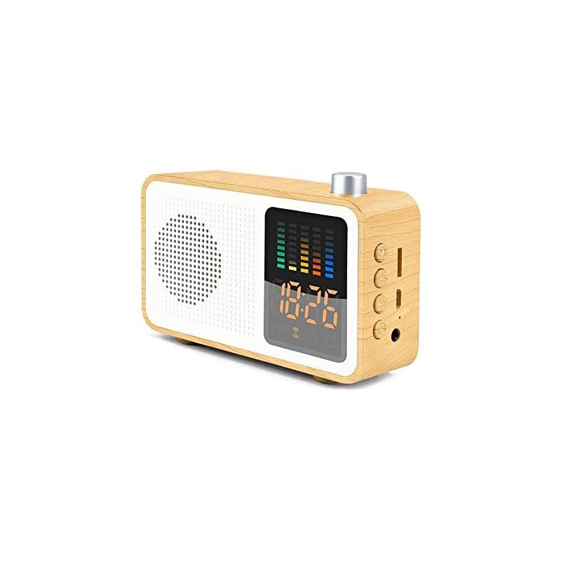 SEATIGER Retro Portable Bluetooth Speake
