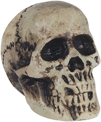 Loftus International Foam Decaying Skull Halloween 7
