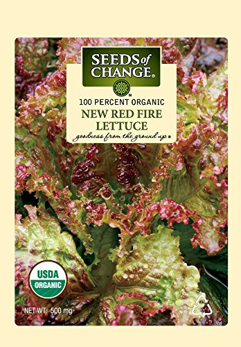 - Seeds of Change S21038 Certified Organic New Red Fire Red Leaf Lettuce