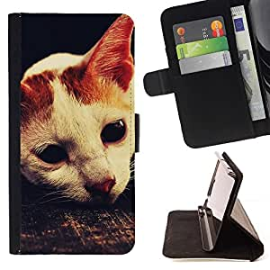 Momo Phone Case / Flip Funda de Cuero Case Cover - Laperm American Shorthair Gato Singapura; - Sony Xperia Z3 Compact