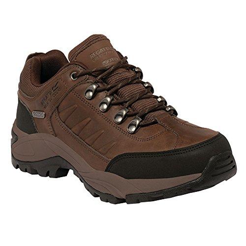 Randonnée Homme Marron Chaussures Smithfield Indchest Regatta de Blk Basses q6tWgxxXn