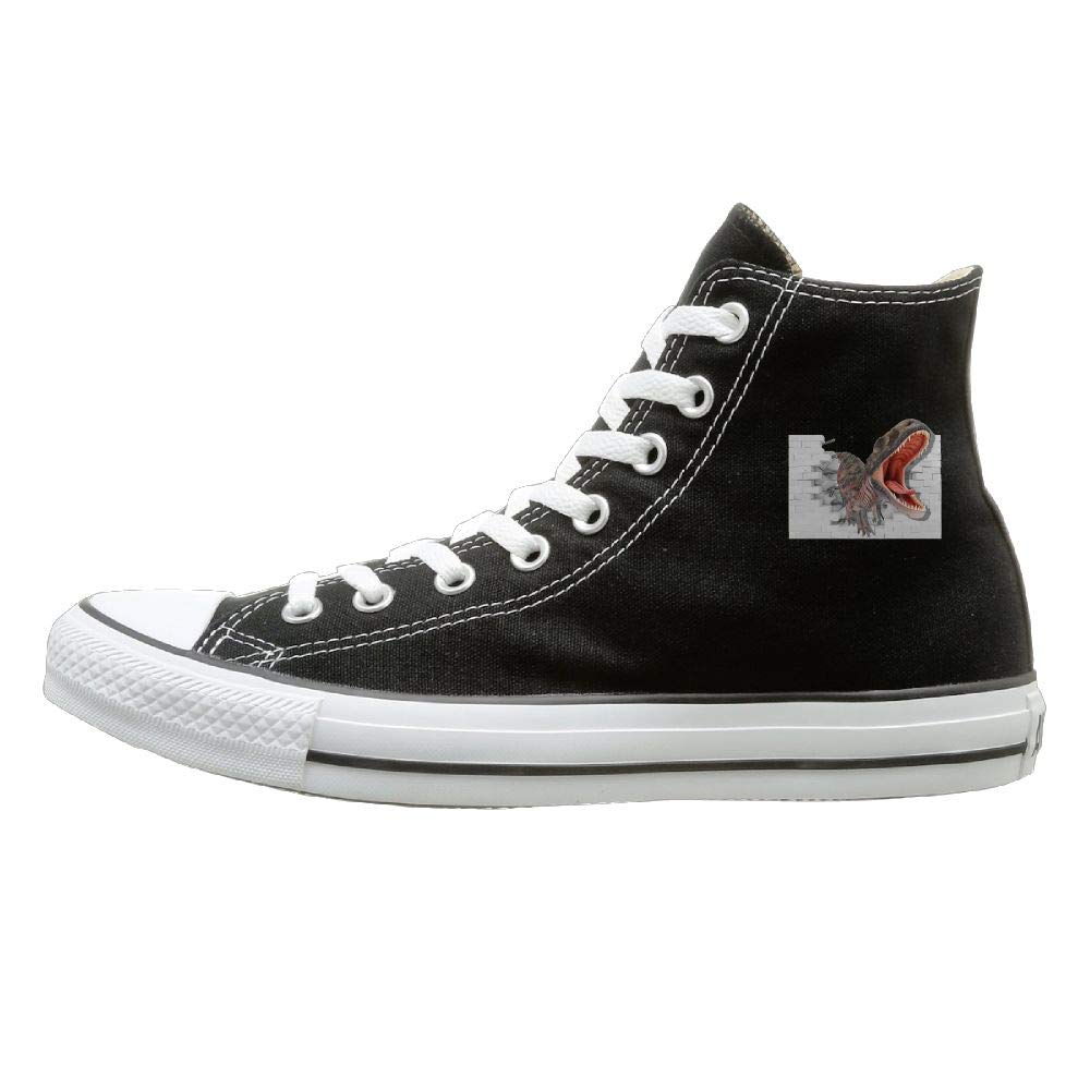 Sakanpo Dinosaur Canvas Shoes High Top Casual Black Sneakers Unisex Style