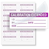 Calibration Extended, Polyester Tag with Clear Flap, 140 Labels/Pack, 1.5'' x 0.625''