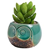 MyGift Small Owl Ceramic Succulent Planter, Flower Pot Vase, Turquoise & Brown