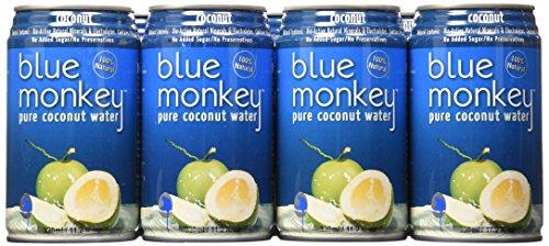 juice monkey - 3