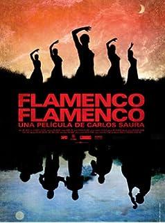 flamenco suhrkamp taschenbuch