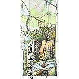 Nikolsdorfer Wände und das Labyrinth 1:10000: Wanderkarte der Sächsischen Schweiz. Die verborgene Sächsische Schweiz.