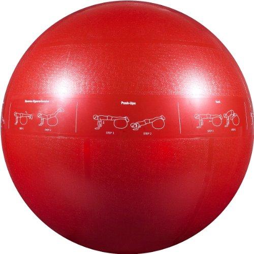 GOFIT PRO CORE STABILITY BALL -65CM