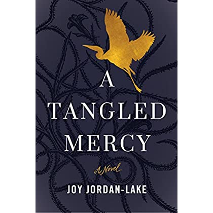 A Tangled Mercy: A Novel