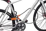 Kryptonite KryptoFlex Looped Bike Security