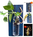 Rustic Home Décor Wall Art Decoration Solid Wooden Board (Retro polished) Hanging Planters Wall Vases Hydroponic Plants Hanging Glassware for Home Garden Living Room Decor (no flower)(Navy blue)