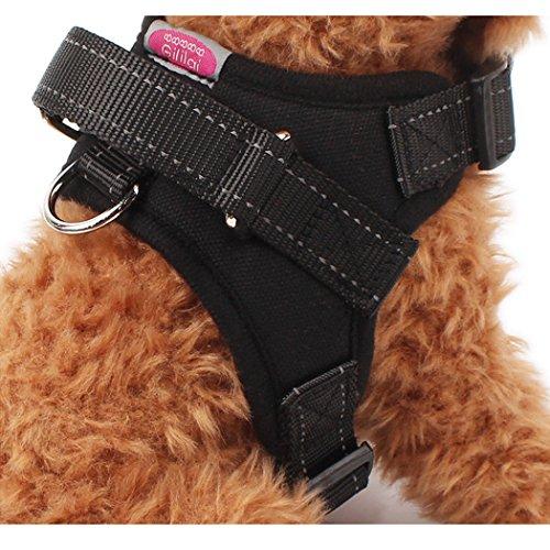 Gililai Adjustable Collar Harness Handle product image