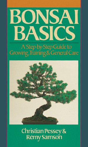 Bonsai Basics: A Step-By-Step Guide To Growing, Training & General Care