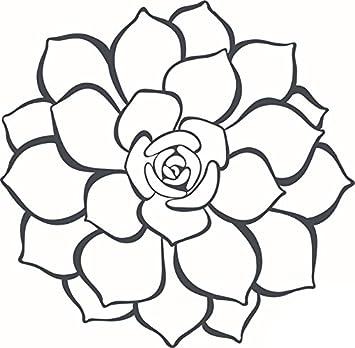 Amazon Pretty Simple Gray Desert Succulent Flower Plant Cartoon