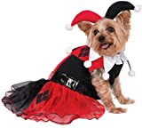 Rubie's DC Comics Harley Quinn Pet Costume, Small