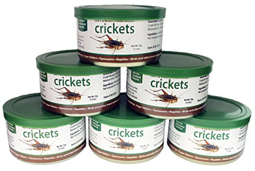 Exotic Nutrition Canned Crickets 35 g / 1.2 oz (6 Pack) by Exotic Nutrition (Image #5)