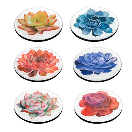 Succulent Plant Fridge Magnets 6 Pcs for Kitchen Office -