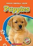 Puppies, Colleen Sexton, 053120460X