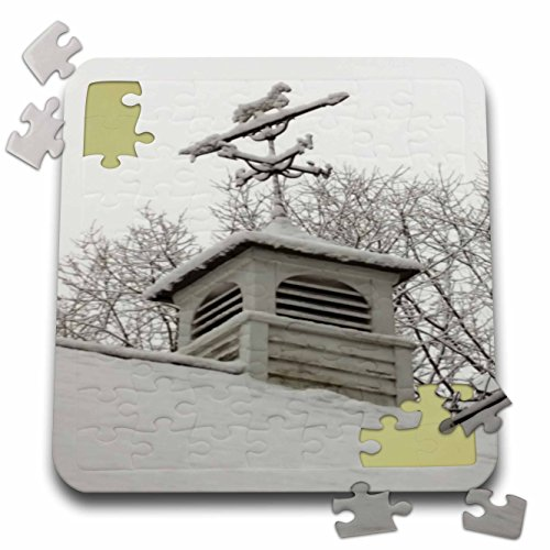 - 3dRose TDSwhite – Winter Seasonal Nature Photos - Rooftop Weathervane Winter Scene - 10x10 Inch Puzzle (pzl_284882_2)
