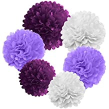 19pcs Paper Pompom Party Decorations and Circle Bunting Banner by Belle Vous - Hanging Poms for All Events Like Birthday Decor & Crafts - Pom Set is in 3 Sizes & Colors with Banner (Purple)