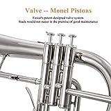 Eastar Bb Flat Flugelhorn Nickel Brass Instrument