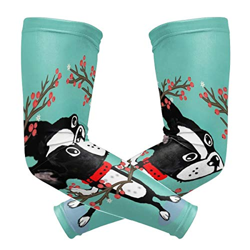 Pineapple Ladder Green Cartoon Bulldog Cute Funny Polyester 1 Pair Protection Cooling Or Warmer Arm Sleeves for Men Women Kids Sunblock Protective Gloves Running Golf Cycling Driving