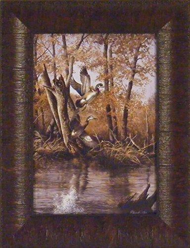 Autumn Retreat by Richard Plasschaert 10x13 Wood Ducks Woodies Waterfowl Flying River Swamp Framed Art Print Picture