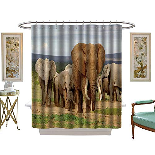 (luvoluxhome Shower Curtain Collection by an Elephant Herd led by a Magnificent Tusker Bull at a Waterhole in theaddo Elephant National W48 x L72 Custom Made Shower Curtain)