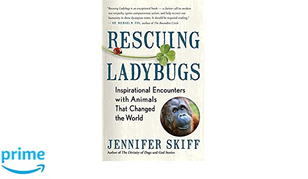 Rescuing Ladybugs: Inspirational Encounters with Animals That Changed the World: Jennifer Skiff: 9781608685028: Amazon.com: Books