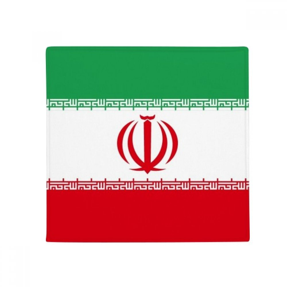 DIYthinker Iran National Flag Asia Country Anti-Slip Floor Pet Mat Square Home Kitchen Door 80Cm Gift