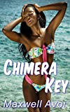 img - for Chimera Key book / textbook / text book