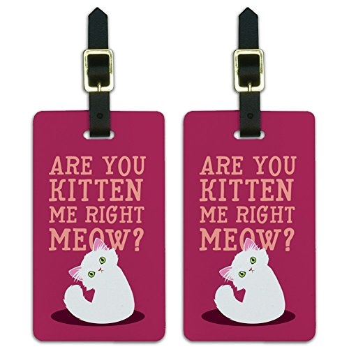 Are You Kitten Me Right Meow Cat Luggage ID Tags Carry-On Cards - Set of 2