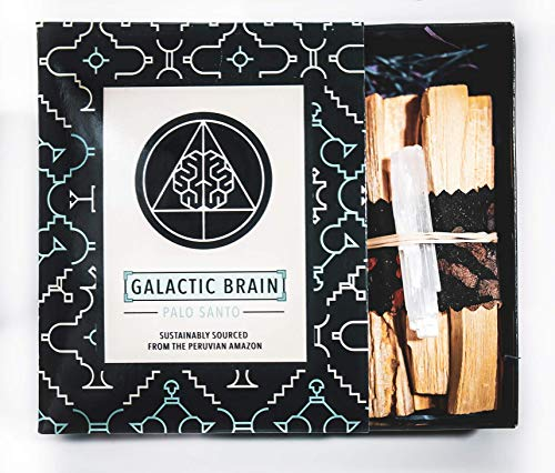 Galactic Brain Palo Santo Sticks | 12-15pcs 4 inch Smudge Sticks in Smudge Kit Gift Set | 90g Palo Santo Wood for Cleansing Your Home (Palo Santo Wood)