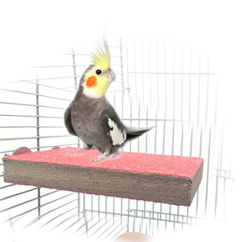 - Colorful Bird Perch Stand Platform Natural Wood Playground Paw Grinding Clean for Pet Parrot Budgies Parakeet Cockatiels Conure Lovebirds Hamster Gerbil Rat Mouse Cage Accessories Exercise Toys