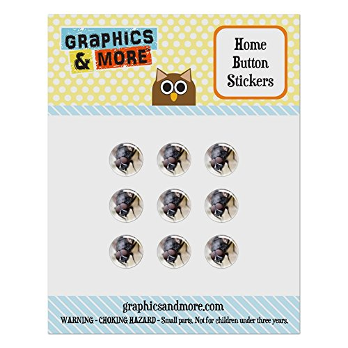 Set of 9 Puffy Bubble Home Button Stickers Fit Apple iPod Touch, iPad Air Mini, iPhone 4/4s 5/5c/5s 6/6s Plus - Insects Ladybug Butterfly Dragonfly - Common House Fly Faceted Eyes