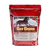 Horse Guard Equine Gut Guard Probiotic and Prebiotic Horse Supplement