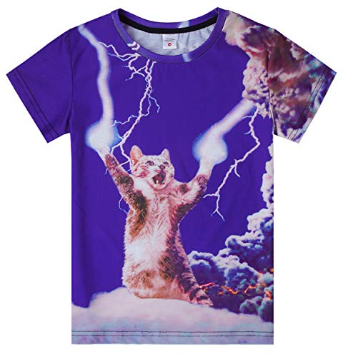 Big Kids Boys Awesome Summer Polyester T-Shirt Hawaii Style Power Cat Clound Tees for Youth Petite Teens 10Y 11Y 12Y(Lightning cat,Medium)