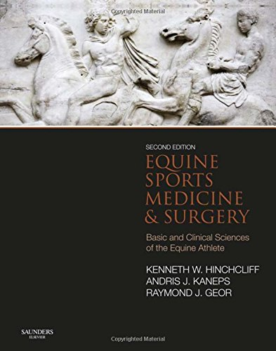 Equine Sports Medicine and Surgery: Basic and clinical sciences of the equine athlete, 2e by imusti