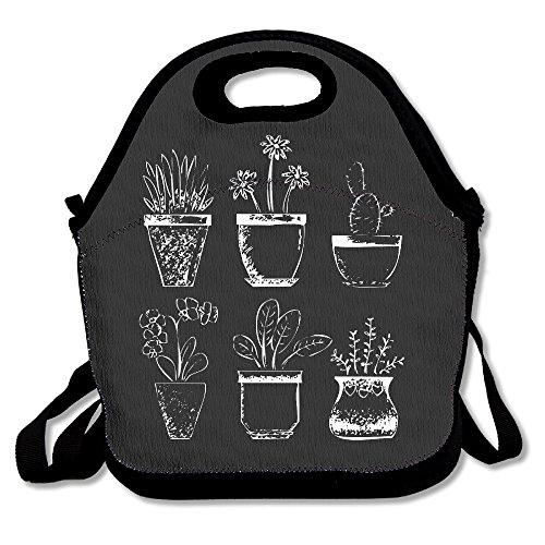 Diferentes Tipos macetas Cactus Bolsa para el almuerzo Box bolsa Bag