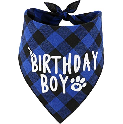 JPB Dog Birthday Boy Bandana