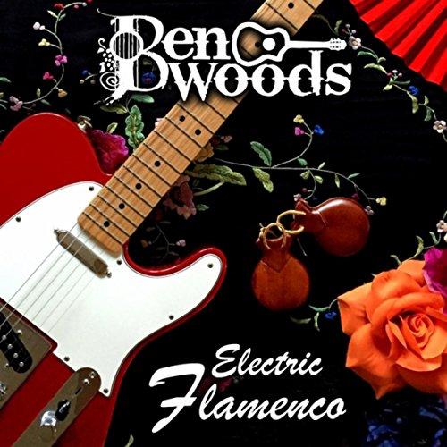 Electric Flamenco [Explicit] -