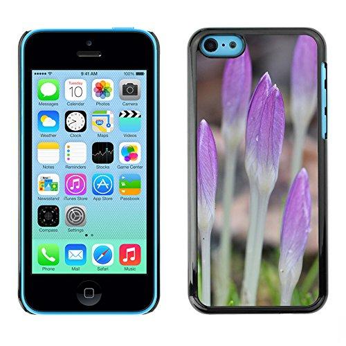 Premio Sottile Slim Cassa Custodia Case Cover Shell // F00025468 Fleurs pousses // Apple iPhone 5C